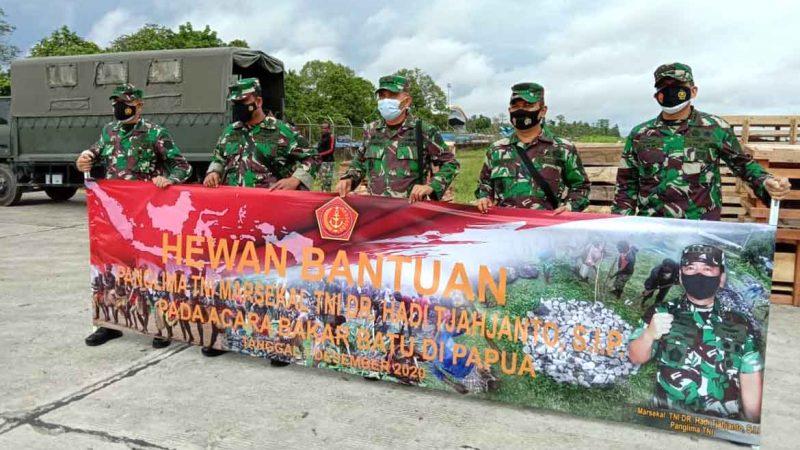 Pesawat Hercules Angkut 59 babi Bantuan Panglima TNI ke Timika